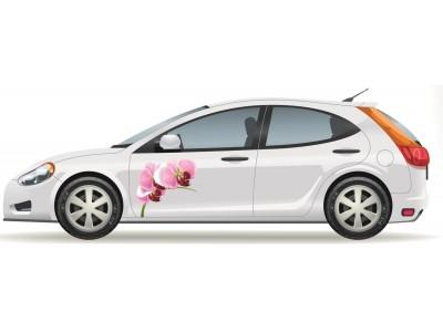 Orchideás autómatrica