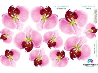 Orchidea virágos autómatrica csomag - 11 részes